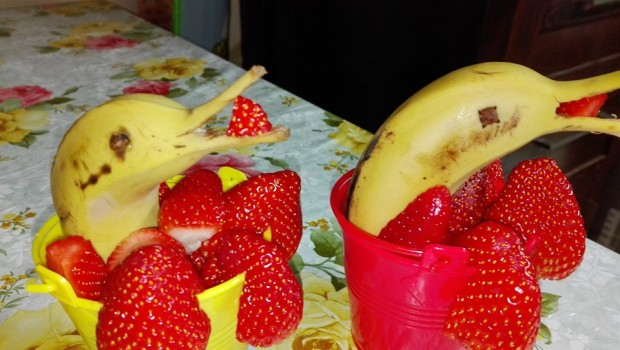 ירקות או לא להיות – ירקות מעוצבים לילדים