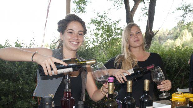 """מצפינים לכפרים הגליליים ולפסגת החרמון בסופ""""ש האחרון בפסטיבל """"בשביל היין"""""""