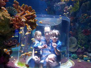 אקווריום ישראל בירושלים, חוויה לכל המשפחה - ים בי-ם