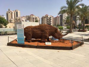 """תערוכה חדשה במוזיאון האדם והחי בר""""ג בחזרה לעידן הקרח"""