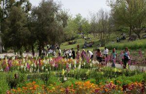 אביב הגיע, פסח בא מגוון אירועי פסח לכל המשפחה בירושלים והסביבה