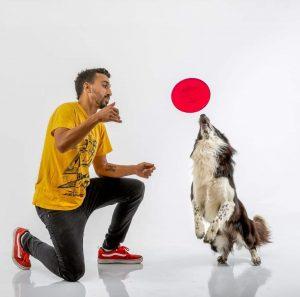 הכלב פאזל במופע פריסבי. צילום- גבריאלה ליאון