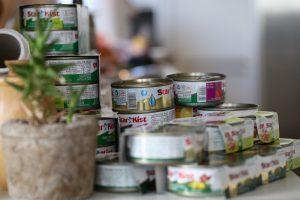 תבשילים חמים ועשירים בחלבונים בשילוב טונה סטארקיסט